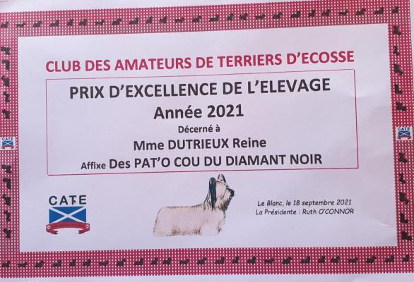 Afficher le site de l'élevage Les Pat O Cou Du Diamant Noir