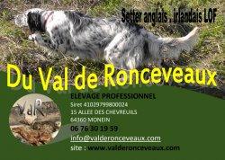 Élevage Du Val De Ronceveaux