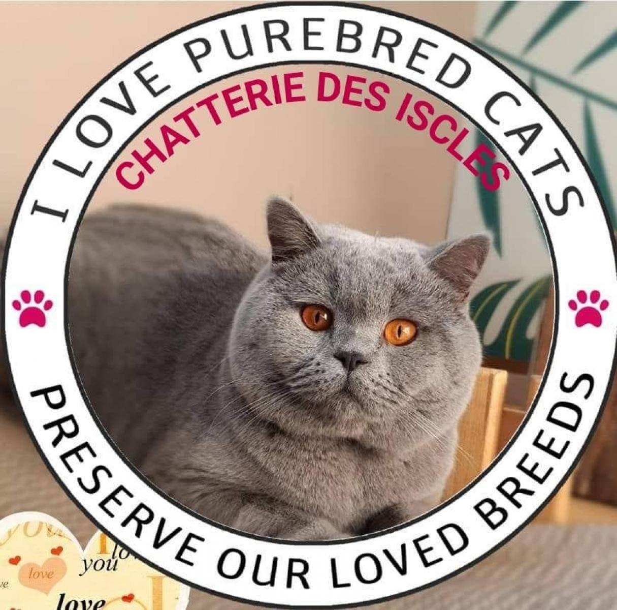 Chatterie Des Iscles