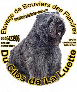 Afficher le site de l'élevage Clos De La Luette