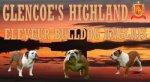 Élevage Glencoe's Highland