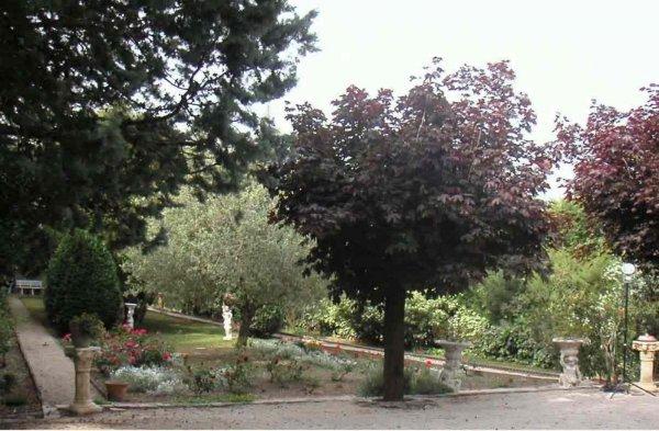 Afficher le site de l'élevage Des Senteurs De Provence