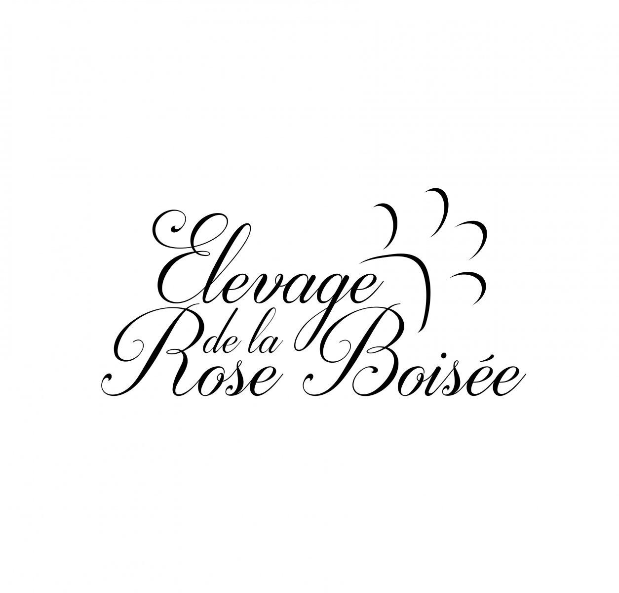 De La Rose Boisée