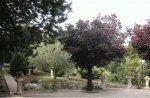 Des Senteurs De Provence
