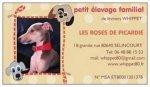 Élevage Les Roses De Picardie