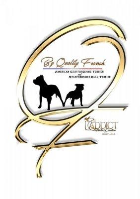 Afficher le site de l'élevage By Quality French