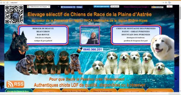 Afficher le site de l'élevage Elevage De La Plaine D'astrée