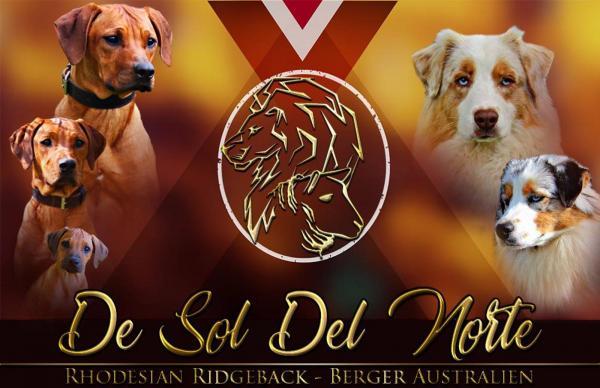 Afficher le site de l'élevage De Sol Del Norte