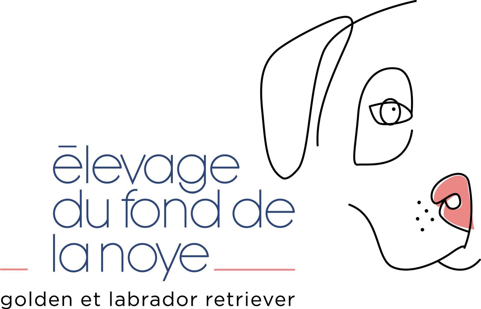 Du Fond De La Noye