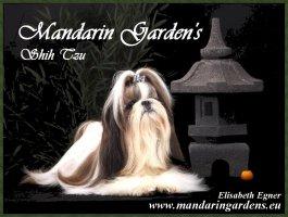 Élevage Mandarin Garden's