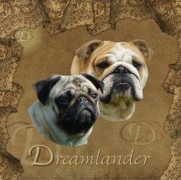 Élevage Dreamlander