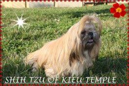 Of Kieu Temple