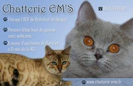 Chatterie Em's