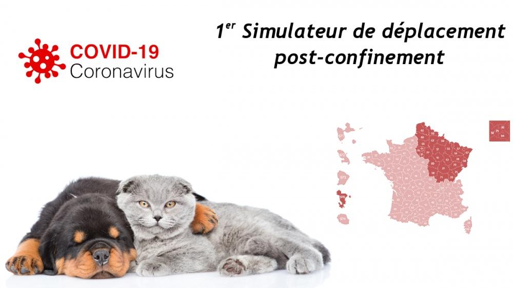 Cession de chiots et chatons et déconfinement covid-19