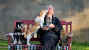 Posséder un chien ou un chat quand on est âgé - Un vrai plus pour la santé !